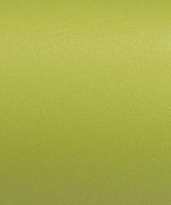 Citrus Green Just Colour